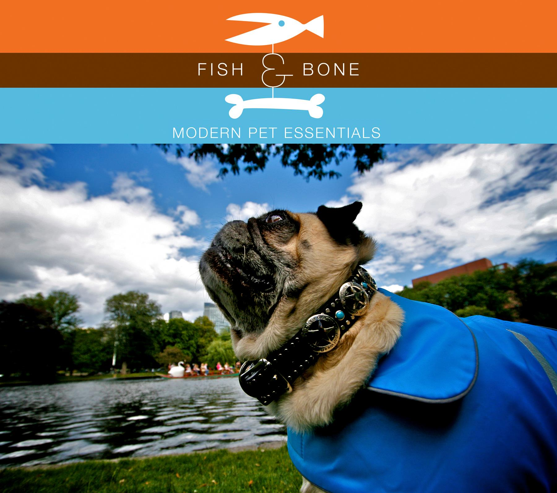 Gone to the Dogs: Local Pet Supply Store Fish & Bone in Boston